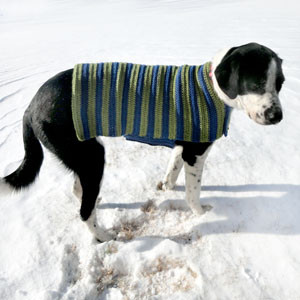 crochet dog sweater coat