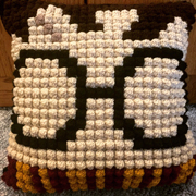Debbie crocheted this awesome Harry Potter pillow.